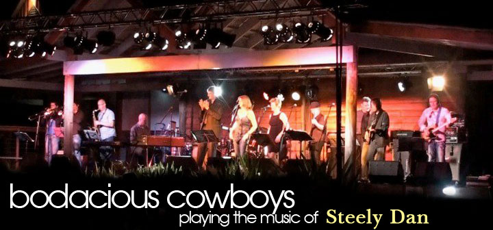Bodacious Cowboys playing the music of Steely Dan